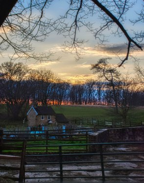 Another Ardrossan Farms Sunset - 2